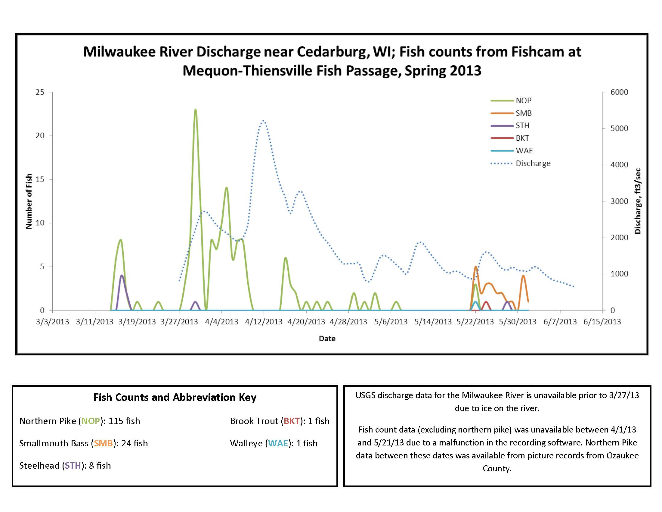 Fish counts and river discharge spring 2013